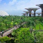 Doğa ile bütünleşmiş kentler