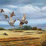 Doğadan tuvale yaban hayatında kuşlar