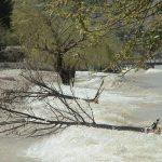 Sulak Alanlar İklimin Düzenleyicisi ve Sigortasıdır