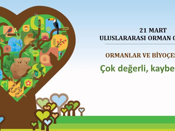ORMANLAR, BİYOLOJİK ÇEŞİTLİLİK VE COVID-19