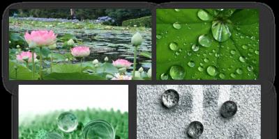 Biyomimikri: Lotus Etkisi