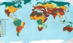Küresel Fosfor Kirliliği