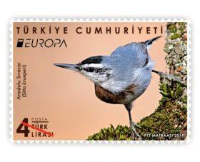 """ANADOLU SIVACISI"" GÜMÜŞ PUL ÖDÜLÜNÜ KAZANDI"