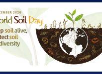 DÜNYA TOPRAK GÜNÜ: Toprağı canlı tut, toprak biyolojik çeşitliliğini koru