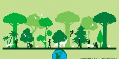 3 MART DÜNYA YABAN HAYATI GÜNÜ: Ormanlar ve Geçim Kaynakları