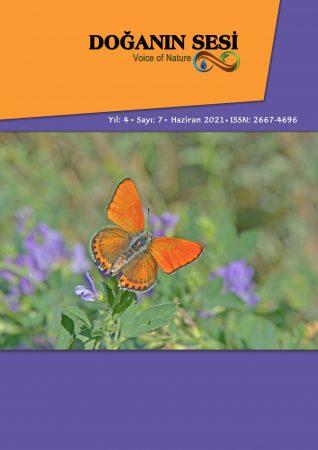 Doğanın Sesi Dergisi Yıl.4 Sayı.7