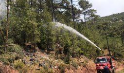 Orman yangınları neden çıkar? Doğal orman yangını kavramı ne demektir? Orman yangınlarında insanın rolü nedir? Ağaç türünün (kızılçam) bir kabahati var mıdır? Çözüm nedir?