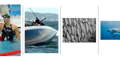 Biyomimikri: Köpek Balığı Derisi